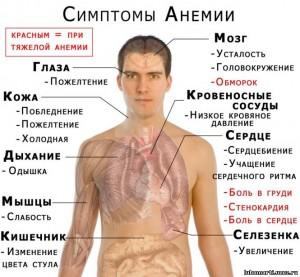 Анемия и ее виды