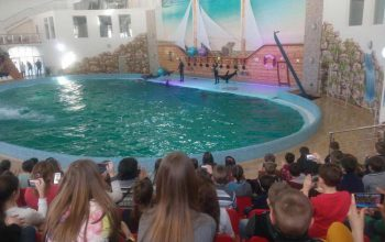 дельфинарий в Трускавце