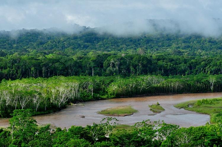 Національний парк Мадіді
